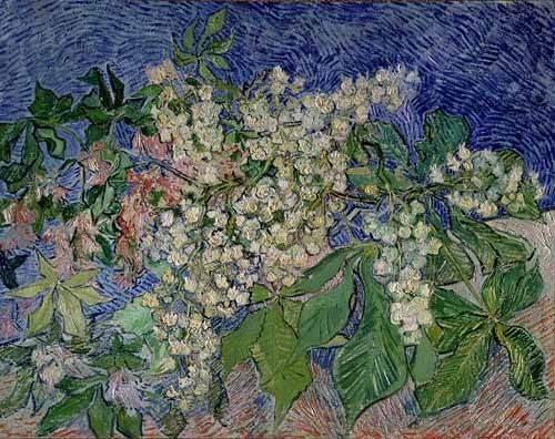 cuadros-de-paisajes - Cuadro -Ramas de castaño en flor- - Van Gogh, Vincent