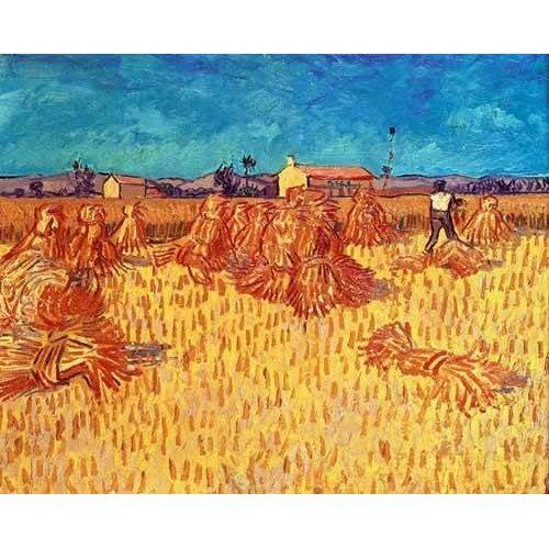 cuadros de paisajes - Cuadro -Campo de cereales con gravillas-