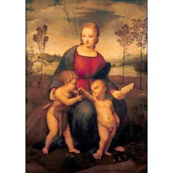- Cuadro -La Virgen del Jilguero- - Rafael, Sanzio da Urbino Raffael