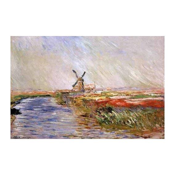 cuadros de paisajes - Cuadro -El campo de tulipanes, Holanda-