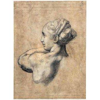 cuadros de retrato - Cuadro -Head_of_a_Woman- - Rafael, Sanzio da Urbino Raffael