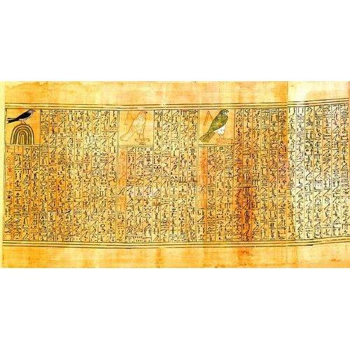 Cuadro -Libro de los muertos (de Ani): Ani como diferentes aves-