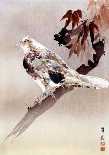 cuadros-etnicos-y-oriente - Cuadro -Pájaro de cuerpo rechoncho- - _Anónimo Chino