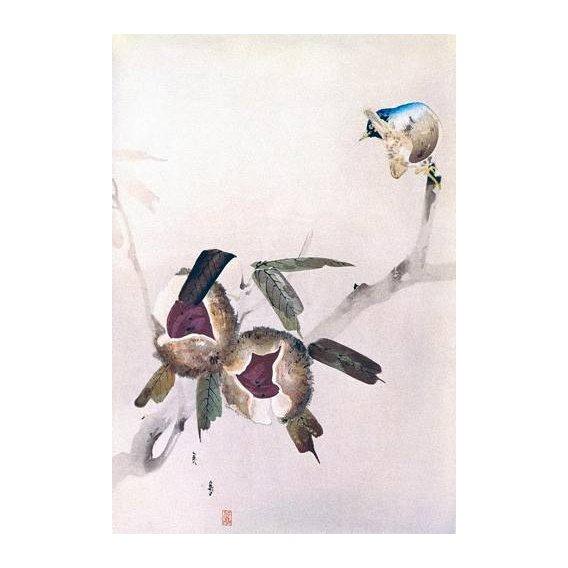 cuadros etnicos y oriente - Cuadro -Pequeño pajaro sobre una rama de castaño-