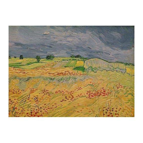 cuadros de paisajes - Cuadro -Plain at Auvers, 1890-