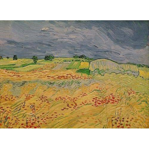 Cuadro -Plain at Auvers, 1890-
