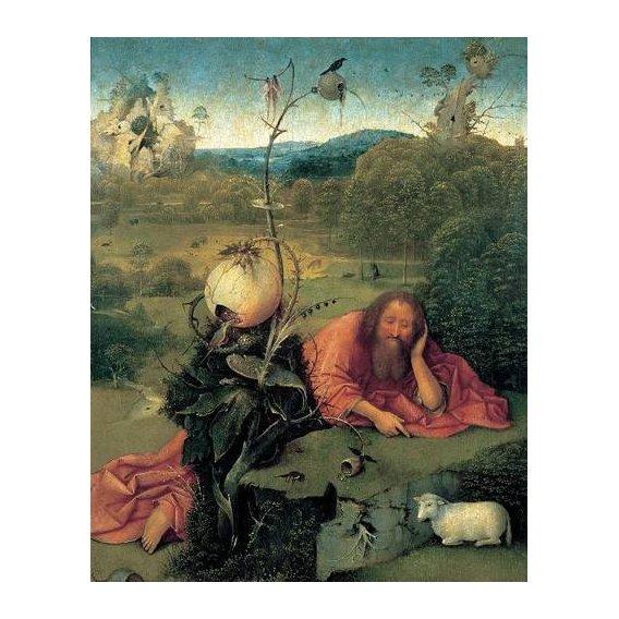 cuadros religiosos - Cuadro -San Juan Bautista en meditación-