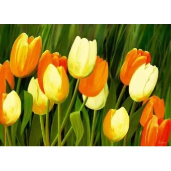 cuadros de flores - Cuadro -Moderno CM1357- - Medeiros, Celito