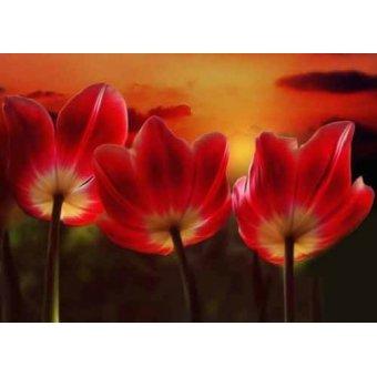 cuadros de flores - Cuadro -Moderno CM1455- - Medeiros, Celito