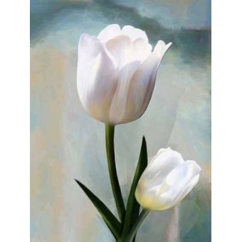 cuadros de flores - Cuadro -Moderno CM2038- - Medeiros, Celito
