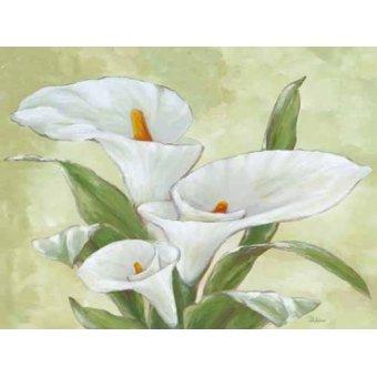 cuadros de flores - Cuadro -Moderno CM2067- - Medeiros, Celito