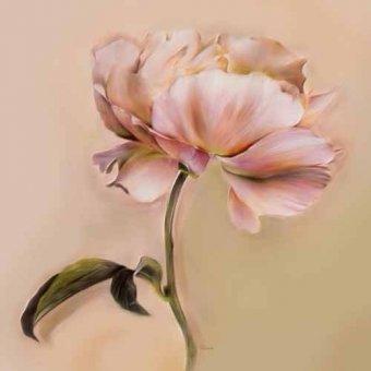 cuadros de flores - Cuadro -Moderno CM2478jb- - Medeiros, Celito