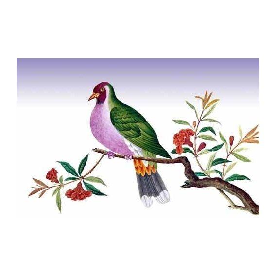 cuadros de fauna - Cuadro -Pajaro sobre una rama-