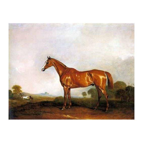 cuadros de fauna - Cuadro -A Chestnut Hunter in a Landscape-