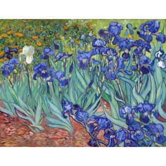 - Cuadro -Irises, 1889- - Van Gogh, Vincent
