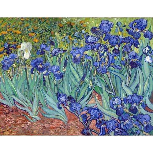 cuadros de flores - Cuadro -Irises, 1889-