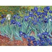 Cuadro -Irises, 1889-