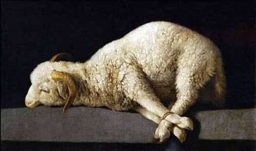 cuadros-de-bodegones - Cuadro -Agnus Dei, 1635-40- - Zurbaran, Francisco de