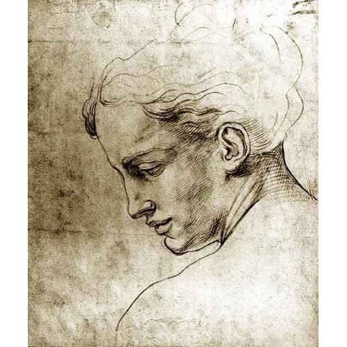 cuadros de mapas, grabados y acuarelas - Cuadro -Volto di giovane visto di profilo-