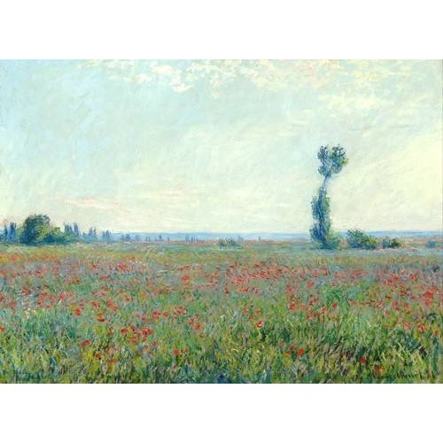 Cuadro -The Poppy Field near Giverny-