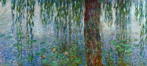 cuadros-de-paisajes - Cuadro -Waterlilies, Morning with Weeping Willows, (left section)- - Monet, Claude