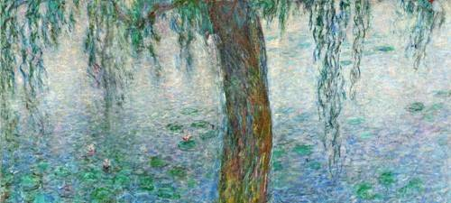 cuadros-de-paisajes - Cuadro -Waterlilies, Morning with Weeping Willows, (right section)- - Monet, Claude
