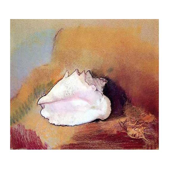 cuadros de bodegones - Cuadro -La concha de mar-