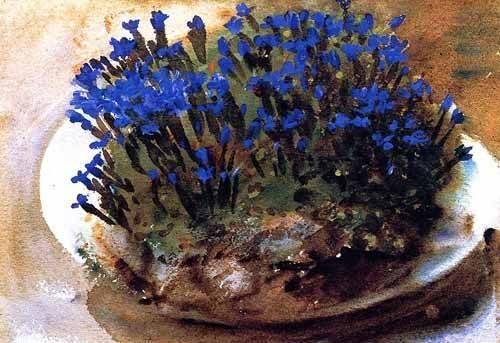 cuadros-decorativos - Cuadro -Gencianas azules- - Sargent, John Singer