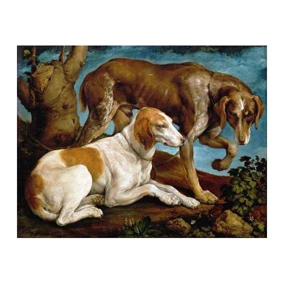 cuadros de fauna - Cuadro -Dos perros de caza-