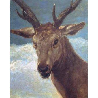 cuadros de fauna - Cuadro -Cabeza de venado- (de caza) - Velazquez, Diego de Silva
