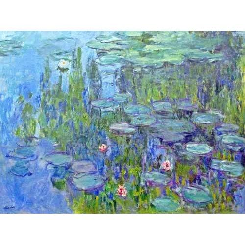 cuadros de flores - Cuadro -Ninfee, 1914-