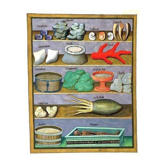 cuadros decorativos - Cuadro -Libro de las medicinas sencillas 1-