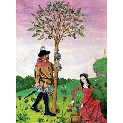 cuadros decorativos - Cuadro -Libro de las medicinas sencillas 4-