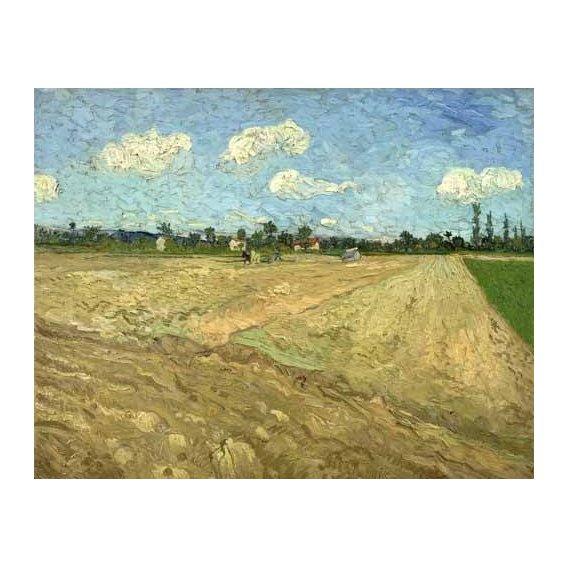 cuadros de paisajes - Cuadro -Ploughed fields (The furrows), 1888-