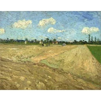 - Cuadro -Ploughed fields (The furrows), 1888- - Van Gogh, Vincent