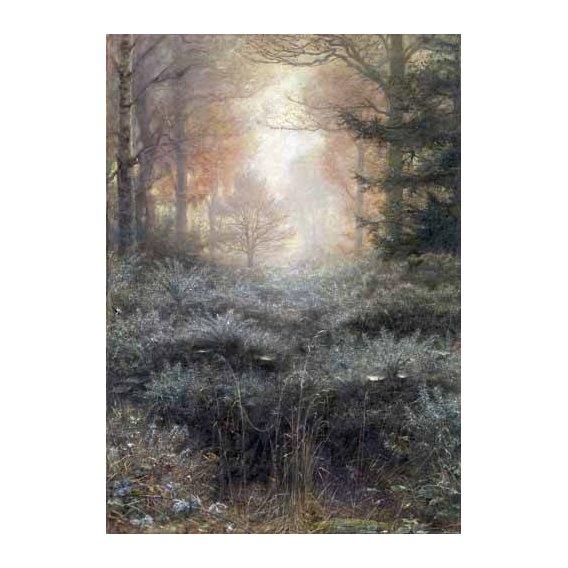 cuadros de paisajes - Cuadro -Dew-Drenched Furze-