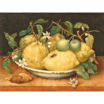 - Cuadro -Bodegón con cesto de limones- - Garzoni, Giovanna