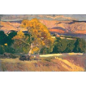 Cuadro -Arbol Amarillo, La Granja, 1906- - Sorolla, Joaquin