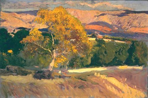 cuadros-de-paisajes - Cuadro -Arbol Amarillo, La Granja, 1906- - Sorolla, Joaquin
