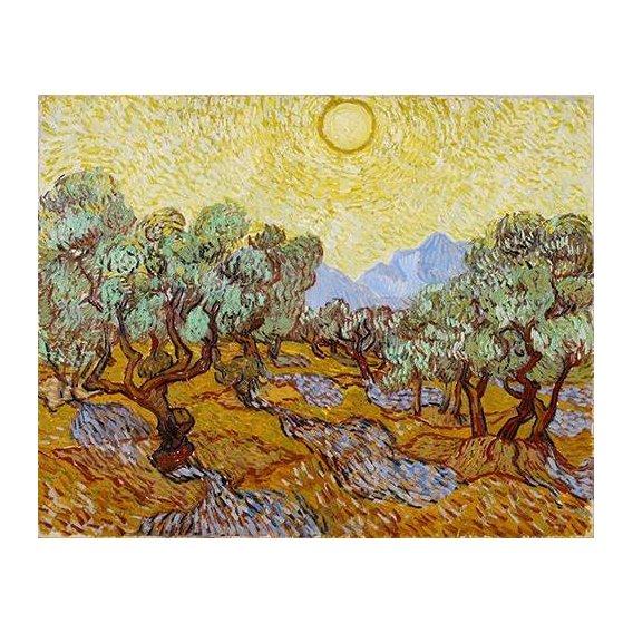 cuadros de paisajes - Cuadro -Olive Trees-