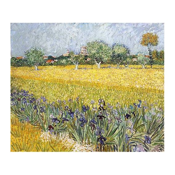 cuadros de paisajes - Cuadro -Field with flowers near Arles, 1888-
