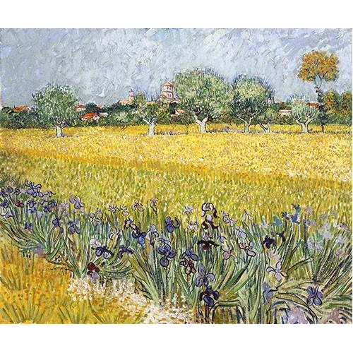 Cuadro -Field with flowers near Arles, 1888-