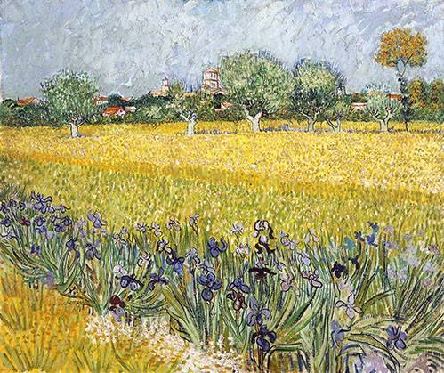 cuadros-de-paisajes - Cuadro -Field with flowers near Arles, 1888- - Van Gogh, Vincent