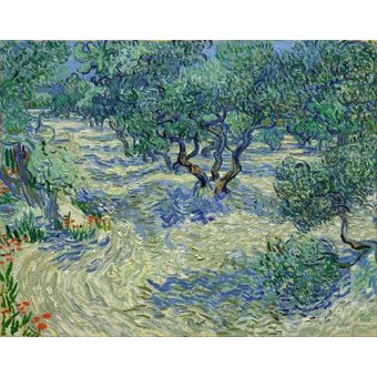 - Cuadro -Olive Orchard, 1889- - Van Gogh, Vincent