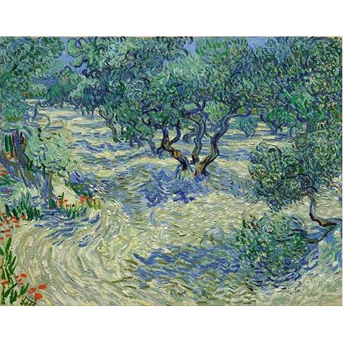 cuadros de paisajes - Cuadro -Olive Orchard, 1889-