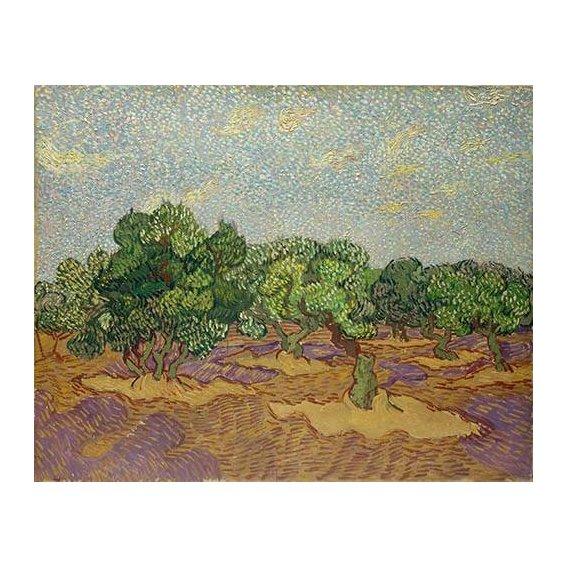 cuadros de paisajes - Cuadro -Olivos-