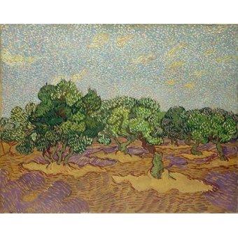 - Cuadro -Olivos- - Van Gogh, Vincent
