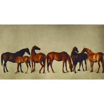 cuadros de fauna - Cuadro -Mares and Foals- (caballos) - Stubbs, George
