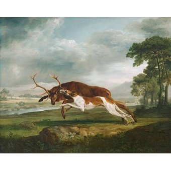 cuadros de fauna - Cuadro -Hound Coursing a Stag- (caza) - Stubbs, George