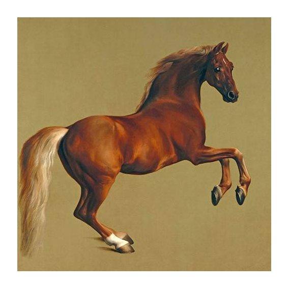 cuadros de fauna - Cuadro -Whistlejacket- (caballos)